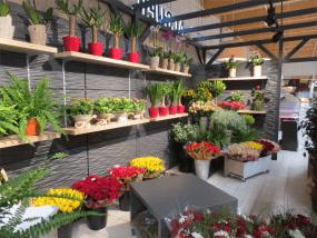 Agencement Fleurs et plantes de l'Intermarché de Thonon-les-Bains