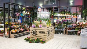 Aménagement rayon Fleurs et plantes du Super U d'Orthez