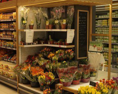 Mobilier rayon fleurs et plantes