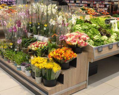 Mobiliers rayon fleurs et plantes