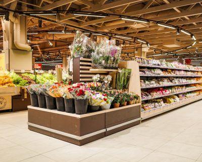 Tête de gondole fleurs et plantes